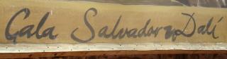 Sen nimi on Salvador