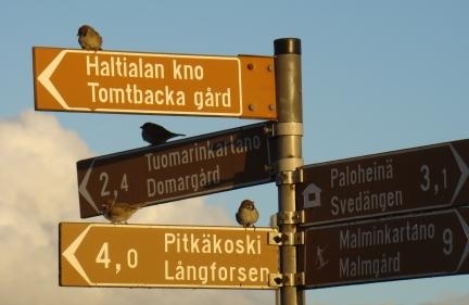 Onko Helsinki Helsingissä?