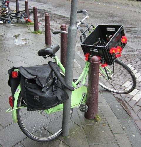 ´s-Hertogenbosch, Alankomaat, 2011