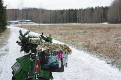 Tammikuu viikko 1. Paloheinä. Ei lunta, vain valkeaa kuuraa maassa.